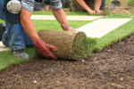 Laying Sod *6 Month Warranty! CALL FOR DETAILS 770-