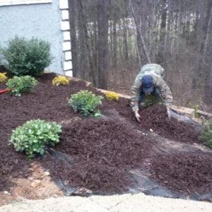 sam-smith-landscaping-planting-mulch