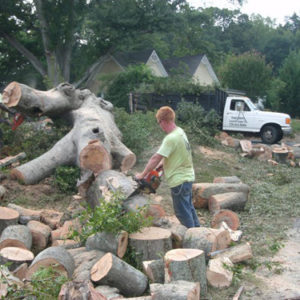 sam-smith-landscaping-tree-removal